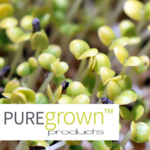 PUREGrown-Products-Hemp